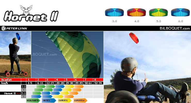 4 line kite Hornet II 5.0 m (green) Peter Lynn