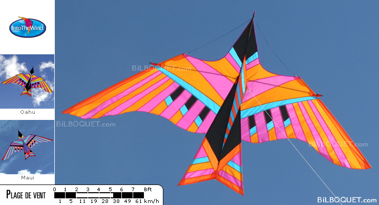 Cloud Bird Kite by George Peters - Oahu Into The Wind