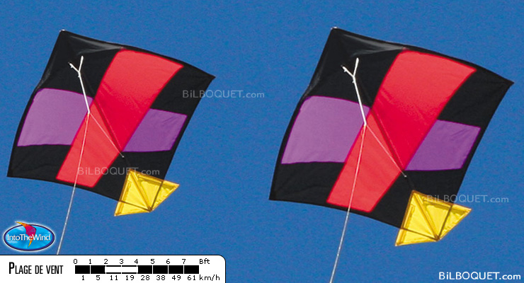 George Peters' Indian Fighter Kite Into The Wind