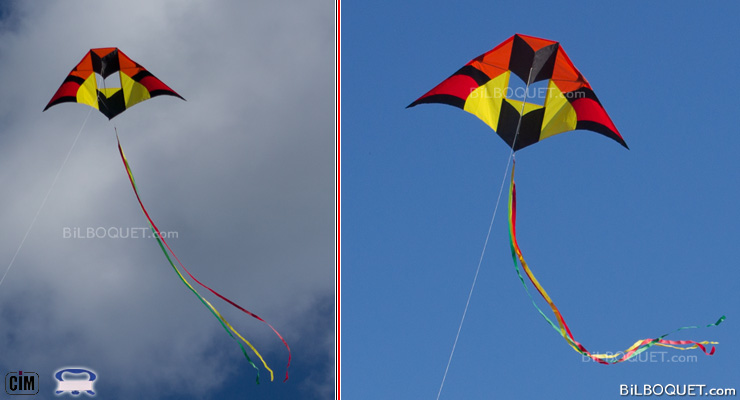Delta Box 160 cm Single-line kite for adults Colours in Motion