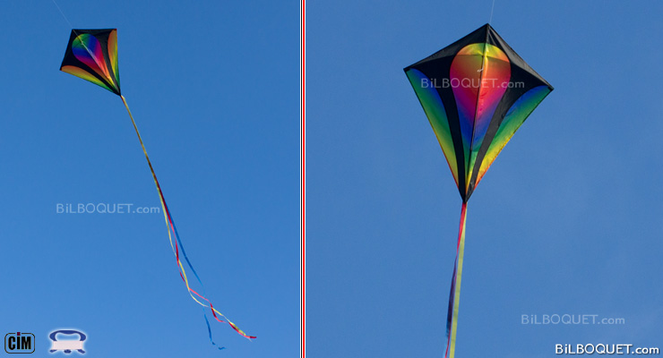 Eddy XL Gradient Large Single-line Kite Colours in Motion