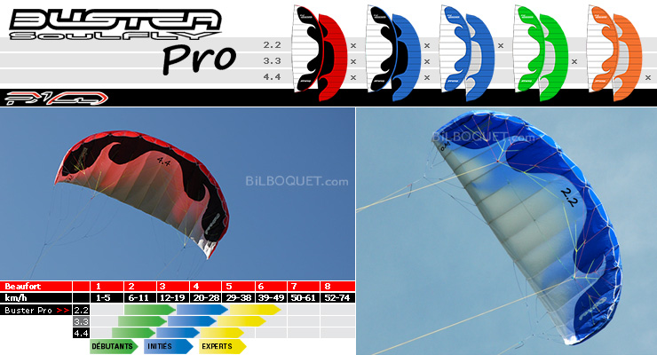 Buster Soulfly PRO 2.2m² GRAY/BLUE PKD Intl. kites