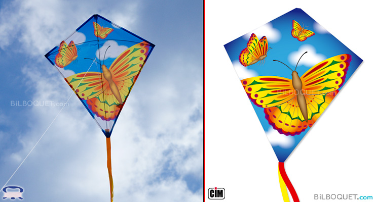 Butterfly Eddy Kite for kids Colours in Motion