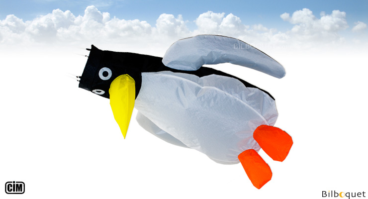 Penguin Windsock 60cm Colours in Motion