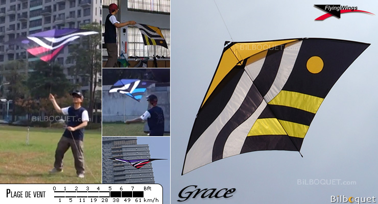 Grace Glider Kite yellow Flying Wings