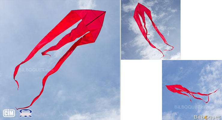 F-Tail Custom Red Single-line Kite Colours in Motion