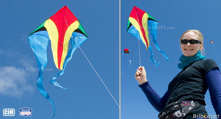 F-Tail XM JUNGLE Single-line Kite Colours in Motion