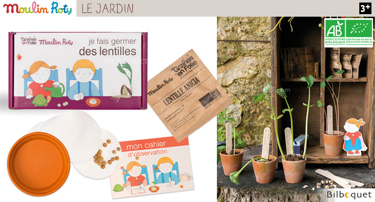 Lentils germination kit - Le Jardin du Moulin Moulin Roty