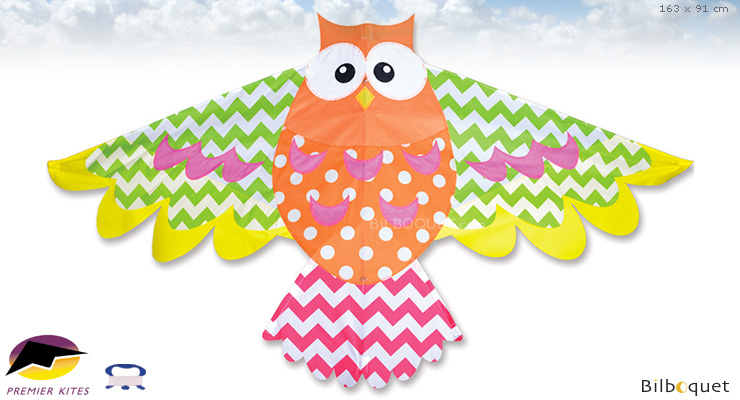 Rainbow Owl Kite - Single-line Kite for kids Premier Kites & Designs