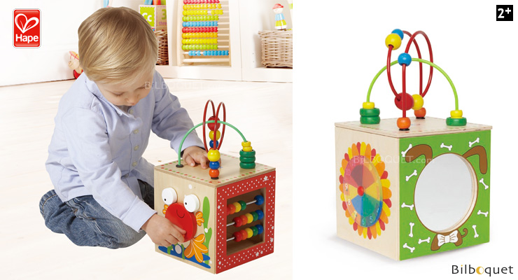 Discovery Box - Wooden Toy for Toddlers Hape Toys