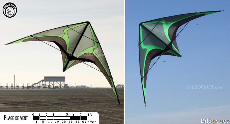 Zodarion Freestyle Kite (kite only) Spiderkites