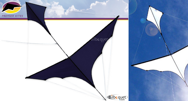 Canard single line kite by Carsten Domann - Black Premier Kites & Designs