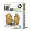 Potato clock 4M - Kidz Labs