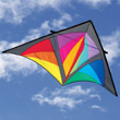 Dan Leigh Trooper Delta Kite Into The Wind