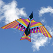 Cerf-volant Cloud Bird by George Peters - Oahu Into The Wind