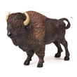 American Buffalo Papo