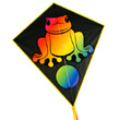 Eddy Rainbow Frog - Single-line Kite for the children Colours in Motion