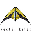 Vision Vector Kite 840 Series - Jaune Premier RC