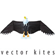 Aigle 6.5FT Vector Kite 840 Series Premier RC