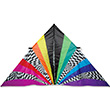Grand Delta 11feet Rainbow Op-Art Premier Kites & Designs
