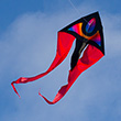 F-Tail XM Supernova Single-line Kite Colours in Motion