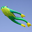 Fritz the frog Single-line Kite 210cm Wolkenstürmer