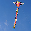 Scintillation Large Single-line Kite (205x91cm) Into The Wind