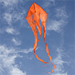 F-Tail Custom Orange Single-line Kite Colours in Motion
