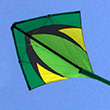 Leon XL Combi - Single- AND Dual-line Kite Spiderkites