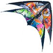 Graffiti Stunt Kite for Beginner Colours in Motion