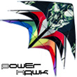 Power Hawk Power Stunt Kite Skull