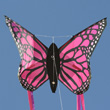 Butterfly Kite PINK - Single-line for kids Wolkenstürmer