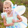Butterfly Dress, Wings and Wand Set - Girl Costume ages 5-6