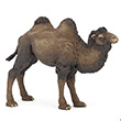 Bactrian camel - Toy Figurine Papo
