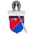 Frederik - Knight's Tunic with Sword Souza for kids